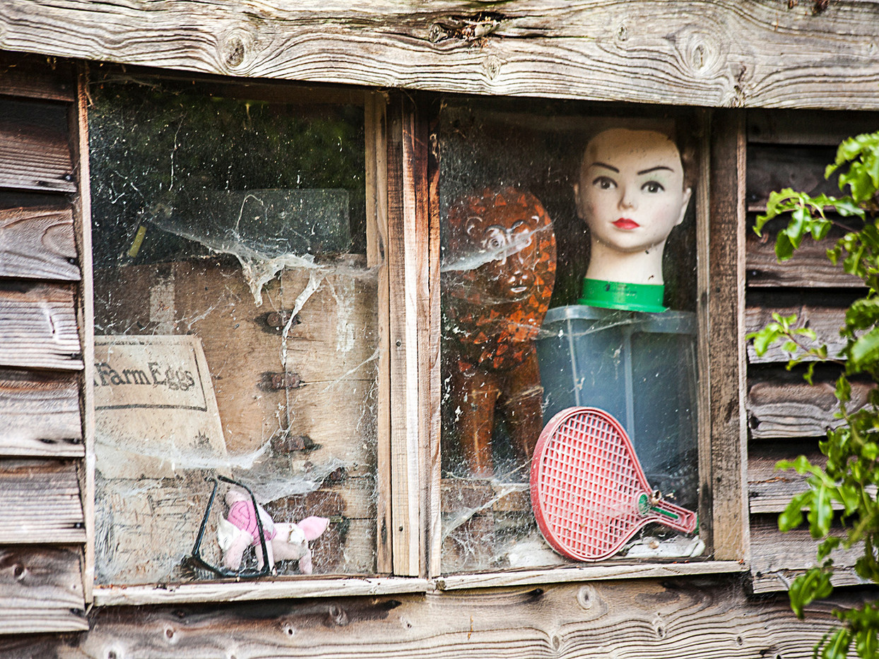 ANYONE FOR TENNIS by Peter Ditchett