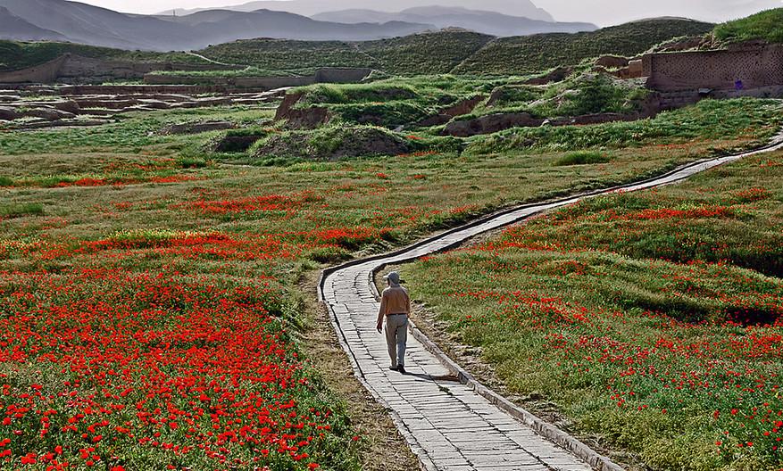 16 THE PATH TO TURKMENISTAN by Joan Gow