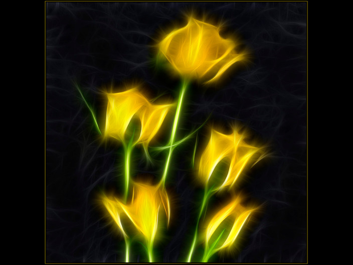 16 YELLOW ROSES IMPRESSION by Mick Dudley