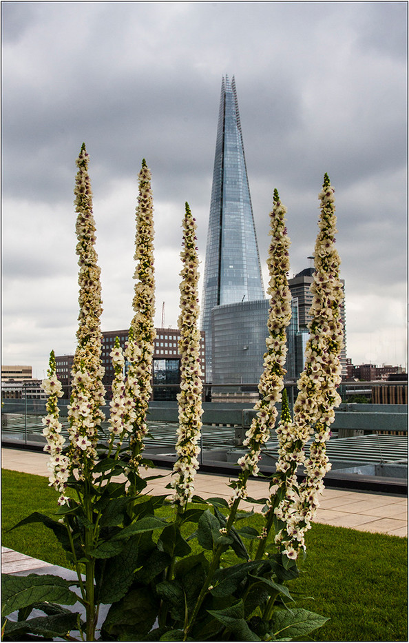 Group 1 17 ALMOST AS HIGH AS THE SHARD by Brian Barkley