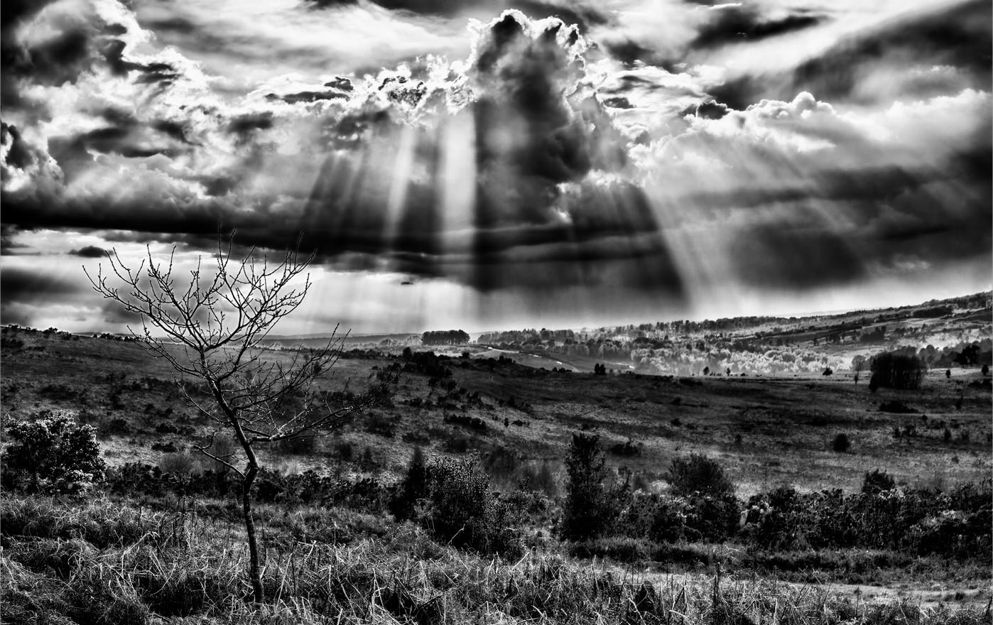 THE SUN BURSTS THROUGH by Nick Ryan