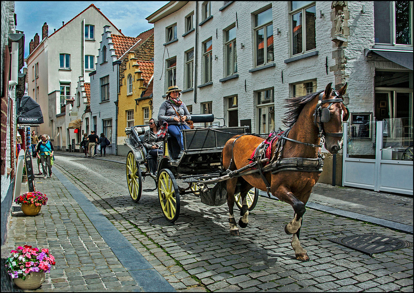 15 HORSE AND CARRIAGE BRUGES by Graham Bunyan