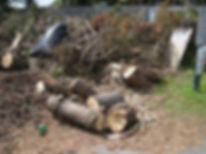 express junk removal, dumpster rental, dumpster rental alternative, trash pickup, junk pickup, youngstown ohio, warren ohio, boardman ohio, tv removal, yard debris removal