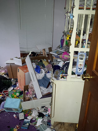express junk removal, dumpster rental, dumpster rental alternative, trash pickup, junk pickup, youngstown ohio, warren ohio, boardman ohio, tv removal, foreclosure cleanout
