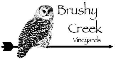 Brushy Logo.jpg