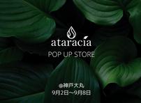 【神戸大丸】 ataraciaのポップアップストアが期間限定OPEN