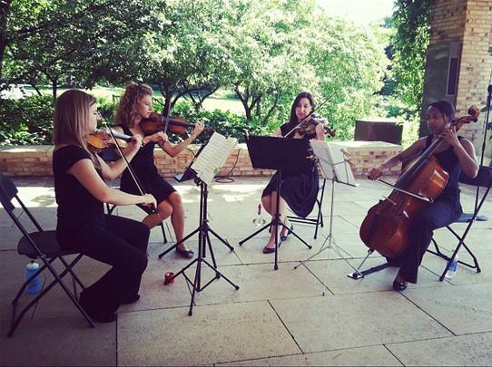 ChiSS String Quartet Gig @ Botanical Gardens