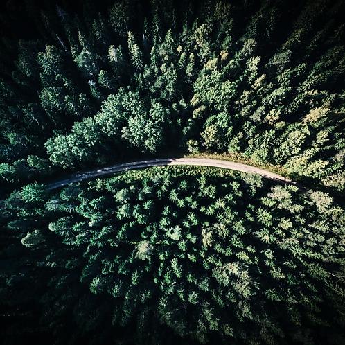 Overlook Road - Violin Instrumental