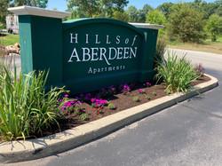 Hills of Aberdeen_Enhancements (1)