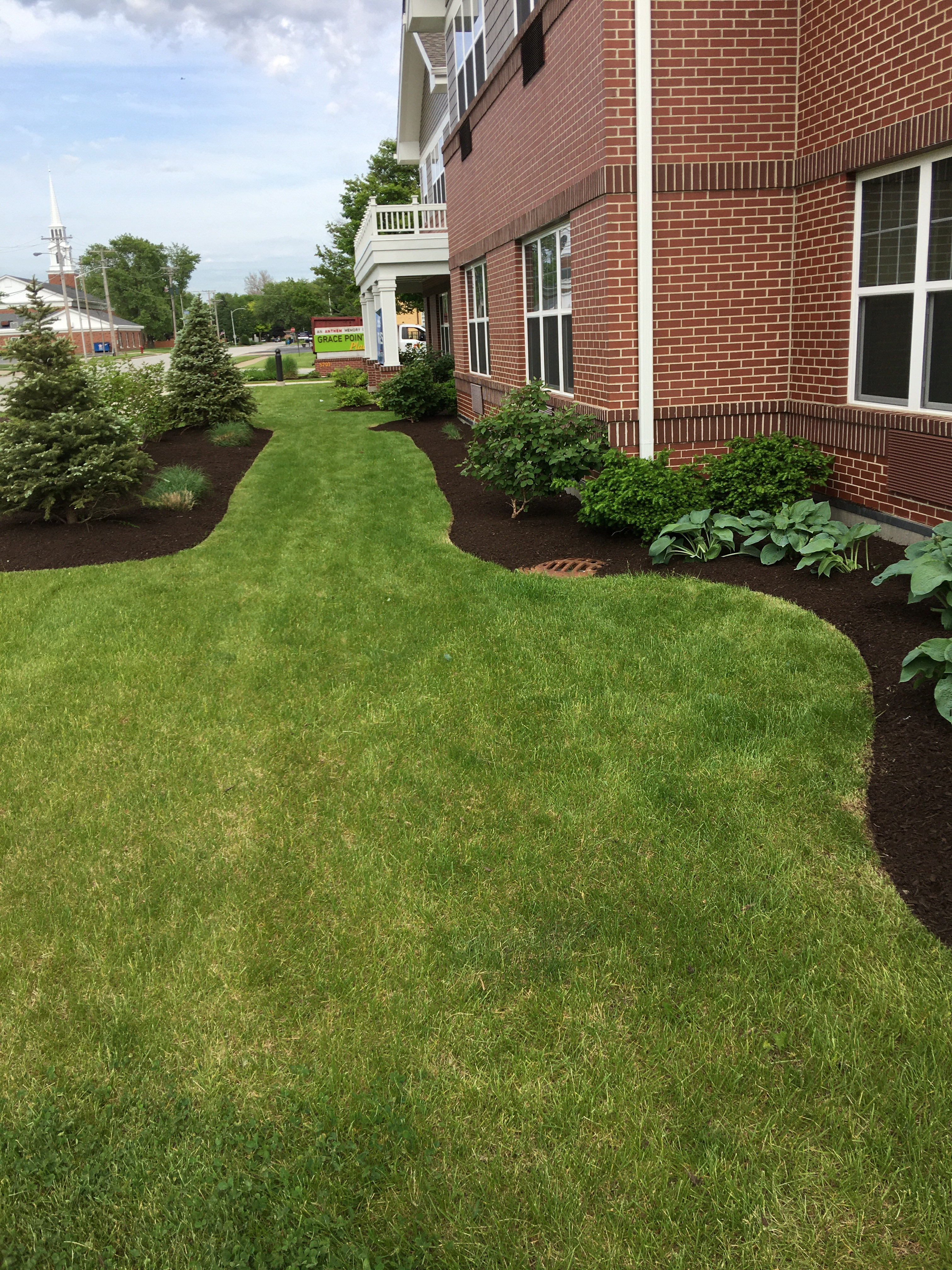 Edging_Mulch (2)