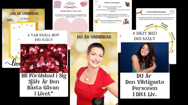 du_är_underbar,_darina_schartman,_coac