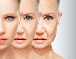 The aging Human Face