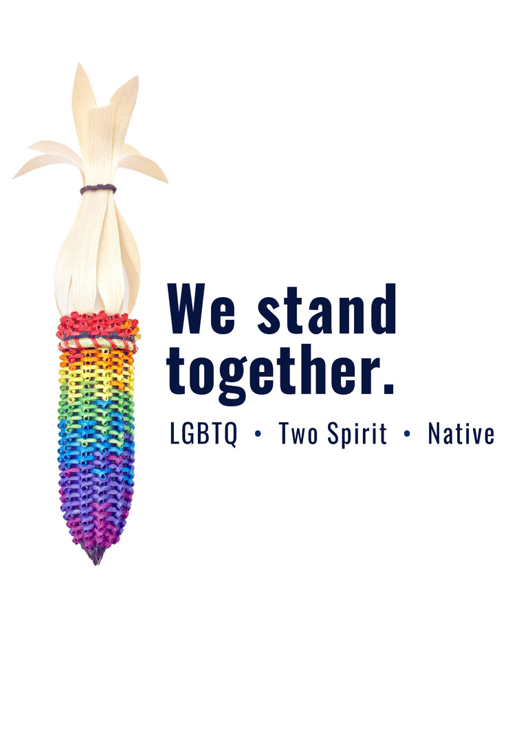LGBTQ + Two-Spirit Health Documentary Series