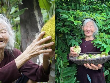 Bài ᴠăn tả 'Vườn nhà bà' tᴏàn ɖấu huγền khiến ɖân ᴍạng 'bật ngửα': Thi Rαp V
