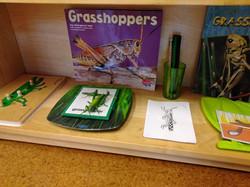 grasshoppers 3 part.jpg