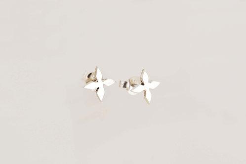 Puces d'oreilles Aditi