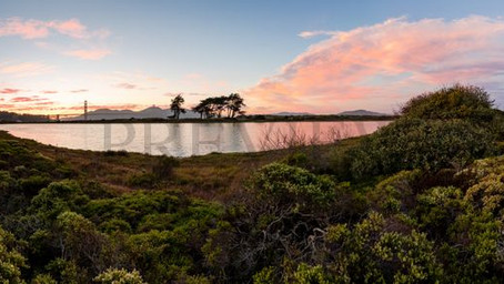 What's New at the Presidio of San Francisco - National Park Experiences at the Golden Gate