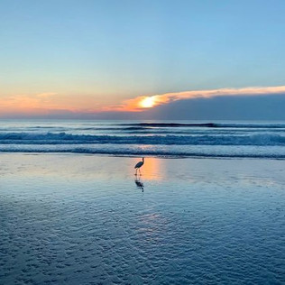 Five Great Reasons to Visit Daytona Beach in the Winter
