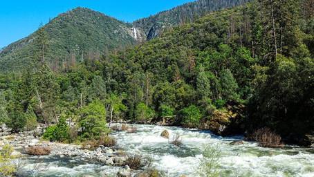 Exploring California's Sierra National Forest