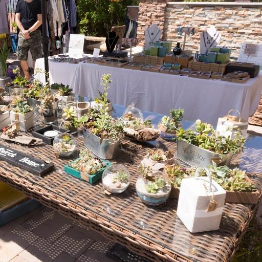 Succulent Table