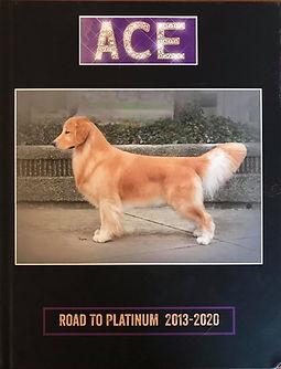 ACE - Road to Platinum.jpg