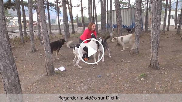 2016 DICI 10 ans refuge video.jpg