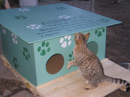 Nourrissoir chat audacce ubaye