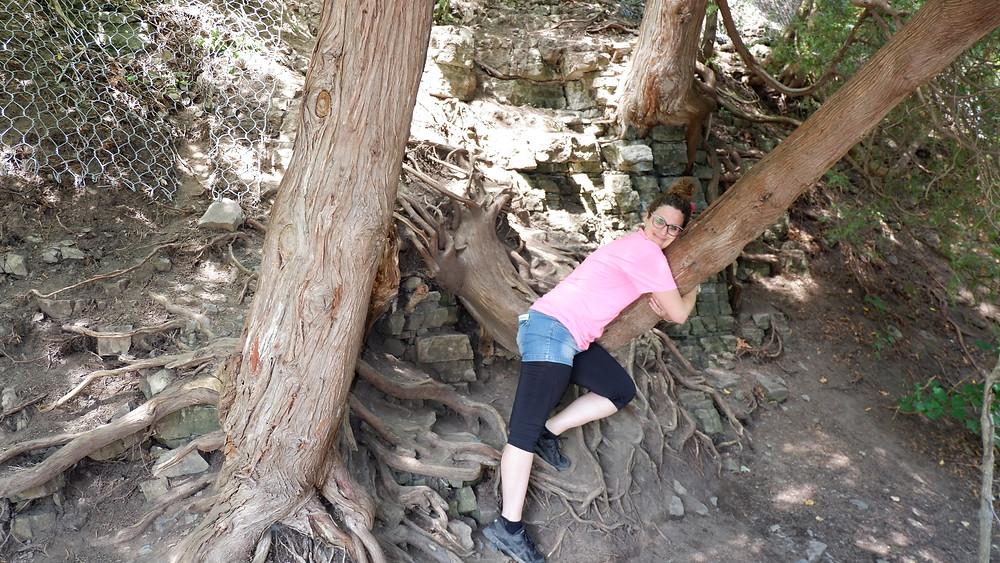 Mon câlin à cet arbre persévérant aux Chutes Montmorency à Québec, août 2018