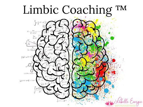 limbic coaching.jpg
