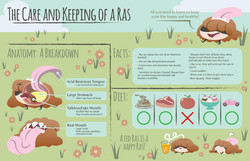 The Care and Keeping of a Ras