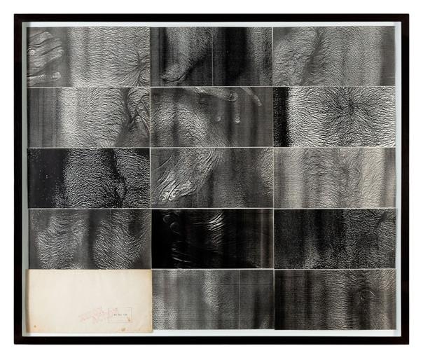 Hudinilson Jr.  Exercício de me ver, 1981 Xerografia sobre papel 12 x 23,5 cm (cada) - 14 partes
