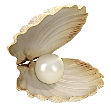 sea_shell_with_pearl_01_edited.png
