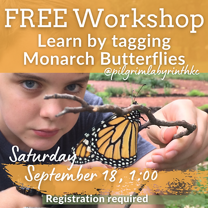 Tag Monarch Butterflies at the Pilgrim Labyrinth & Butterfly Garden September 18.png