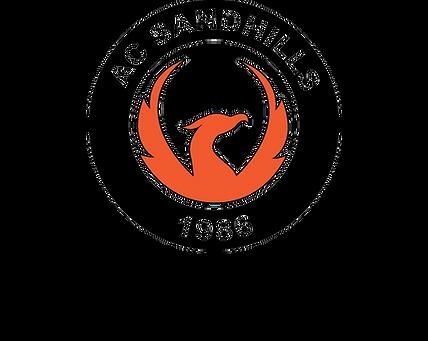 Adult League Logo.png