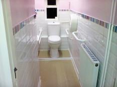 disabled toilet.jpg