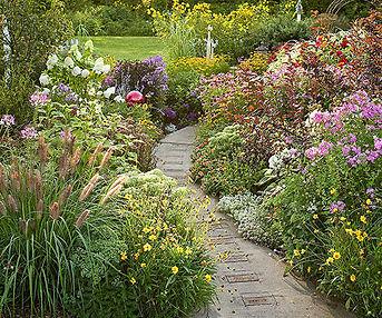 neighbor care pic garden path.jpg