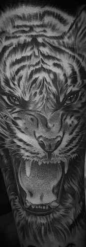 tiger growl tattoo