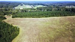 66 acres Reed Mine Road
