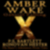 Amber Wake Audiobook