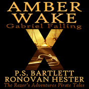 Amber Wake Audiobook