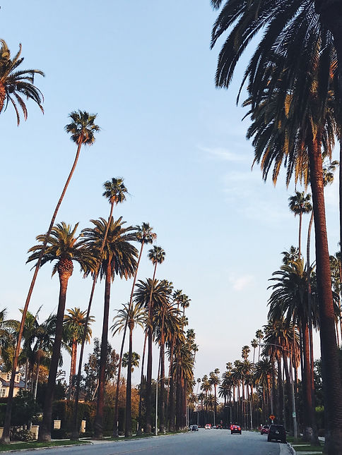 palm-avenue-in-los-angeles-nominated-5AQ