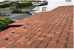 roof_07.png