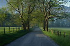 Cades+Cove+in+the+Spring.jpg