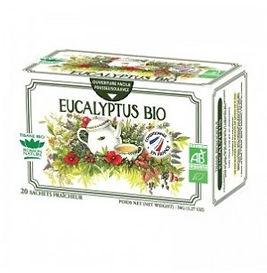 Tisane Eucalyptus Bio 20 sachets