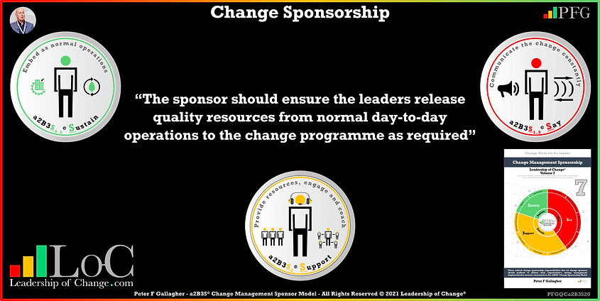 Change Management Sponsorship, The sponsor should ensure the leaders release quality resources from normal day-to-day operations to the change programme as required, Peter F Gallagher Change Management Experts Speakers Global Thought Leaders, Peter F Gallagher Change Management Expert Speaker Global Thought Leader, change sponsorship, leadership of change, change management handbook,