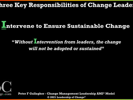 Change Management Leadership - Responsibility Three: Intervene