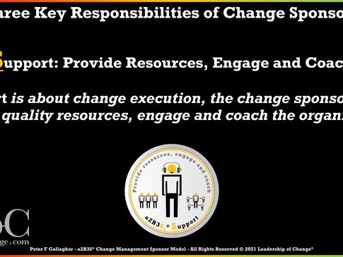 Change Management Sponsorship - Responsibility Two: Support