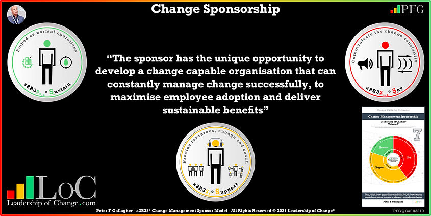 Change Management Sponsorship, The sponsor has the unique opportunity to develop a change capable organisation that can constantly manage change successfully, to maximise employee adoption and deliver sustainable benefits, Peter F Gallagher Change Management Experts Speakers Global Thought Leaders, Peter F Gallagher Change Management Expert Speaker Global Thought Leader, change sponsorship, leadership of change, change management handbook,