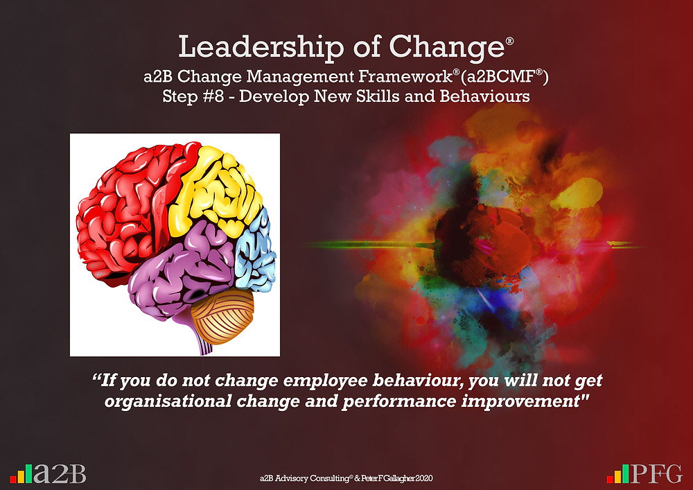 "Change Management, Change Management SDevlop New Skills and Behaviours, Change Management Framework (a2BCMF) – Step 8, """"If you do not change employee behaviour, you will not get organisational change and performance improvement""​ ~ Peter F Gallagher Peter, F Gallagher, PeterFGallagher.com, Change Management Model, Peter F Gallagher Speaker, a2B Change Management Framework, a2B AUILM, a2B AUILM Employee adoption model, a2BBIS, a2B5R® Employee Behavioural Model, a2B5R, a2BCMF, a2B AUILM, Peter F Gallagher Author of ""The Leadership of Change"", The Leadership of Change – volume 1, The Leadership of Change Fables, #LeadershipOfChange, Enabling the leadership of change, a2B Advisory Consulting, www.a2B.consuling, Peter F Gallagher Change Management Expert, Sarah L Gallagher,"