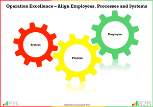 Operational Excellence, Business Improvement, www.peterfgallagher.com,  a2B Advisory Consulting, www.a2B.consulting [Author: Peter F Gallagher]
